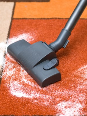 Carpet odor removal in Dracut by Certified Green Team