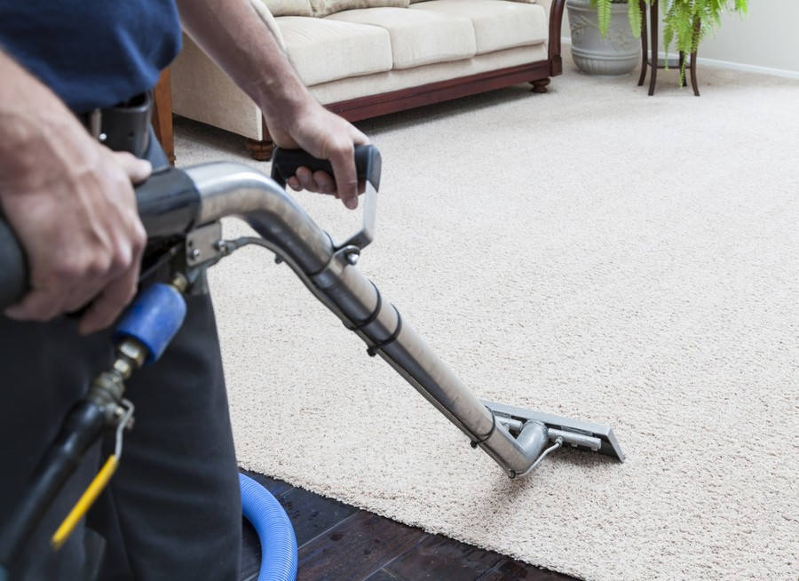 Area rug cleaning by Certified Green Team